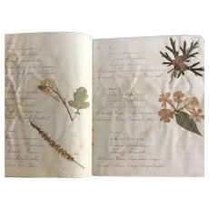 1887 Botanical Notebook of Josie L. Thompson, Norwich, NY