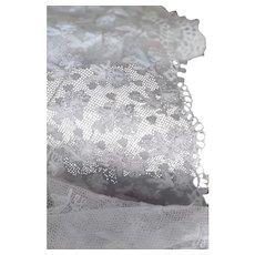 Lovely Vintage Embroidered Net Lace Yardage