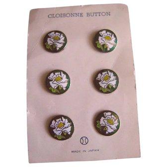Lovely Vintage Cloisonne Buttons on Original Card