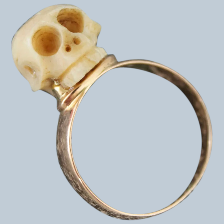 Exceptional Carved Bone Skull Ring In 14 Karat Yellow Gold Georgian Dolls And Lace Ruby Lane