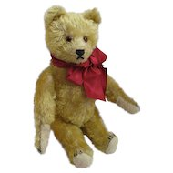 Appealing Schuco Bear Yes No