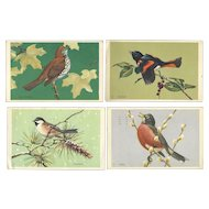 Set of 4 Vintage 1950's National Wildlife Federation Bird Postcards