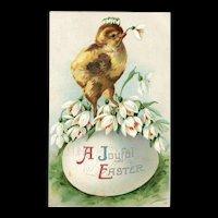 Ellen Clapsaddle Easter Chick Prince on Egg vintage Postcard