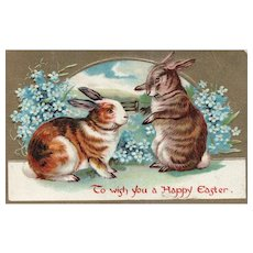 Vintage Easter Bunny Rabbit Postcard with Forget Me Not flowers  Series D No 2