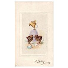 1917 Stetcher Series 30 F Simple Elegant Chicks hatching