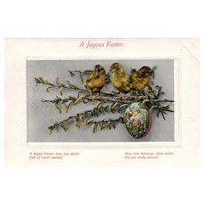 1911 A Joyous Easter Chicks on a branch