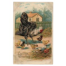 ABS #51 1909 Gold Gilt embossed  Hen with chicks colored eggs vintage postcard