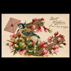 Beautiful Best Wishes floral with Bird delivery vintage postcard