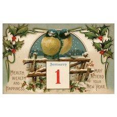 1907 International Art Series 677 Blue birds on a bench New Year Postcard