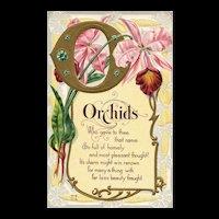 Nash Orchids Floral vintage Postcard Series