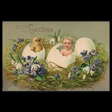 Vintage Easter Greetings Postcard Young Child In Egg and Baby Chick Coming Out of Egg