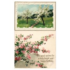 1910 Beautiful All Good Wishes Happy Birthday Spring flowering trees