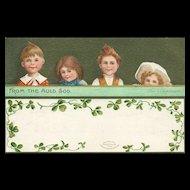 1909 Ellen Clapsaddle St Patricks Day Irish vintage Postcard Green card