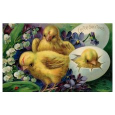 Vintage Easter Greetings Postcards 3 Baby Chicks