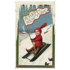 1910 Scarce Wall Happy New Year Boy sliding with birds Vintage Postcard