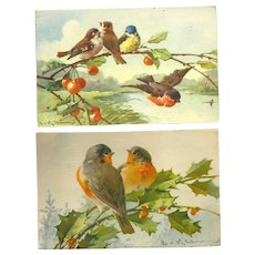 Set of 2 Beautiful Artist Signed Catherine Klein vintage Postcards featuring Bird