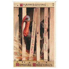 Rare Signed Ellen Clapsaddle Vintage Thanksgiving Postcard Turkey in Crate