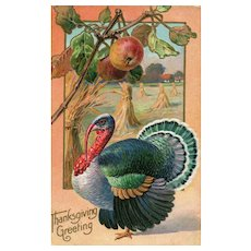 Thanksgiving vintage Turkey Postcard  - Apple Tree Harvest