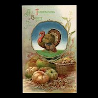 Beautiful Embossed Bavaria All Thanksgiving Bounty be Yours Turkey Pumpkin Postcard