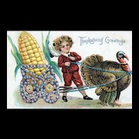 Adorable Turkey Corn Pulling Thanksgiving Postcard with Little Boy