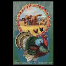 Thanksgiving & Fall Harvest Themed vintage postcard Turkey Hay wagon by bull chickens