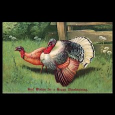 Two Turkeys going for a stroll Vintage Thanksgiving postcard