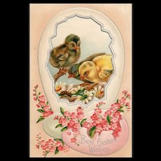 Vintage Best Wishes Easter Wishes Postcard With 3 Young Ducklings With Flowers and a Bee
