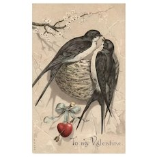To My Valentine AMB #579 Love Birds with a nest vintage Postcard