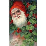 Close Up Santa Claus peeks through a holly bush Series 1480 Christmas Postcard