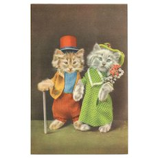 Colorful & Fun Dressed Cats Kitten vintage Postcard