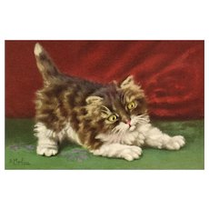 Adorable Artist signed D Merlin Cat No 157 vintage kitten postcard