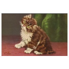 Fabulous Artist Signed D Merlin Cat / Kitten vintage Postcard No 160 Series