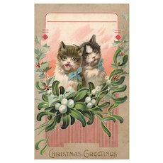 1909 Vintage Christmas postcard with cats Kittens