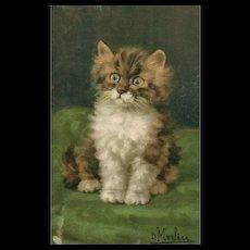 Artist Signed D Merlin Kitty Cat Kitten with green eyes #166
