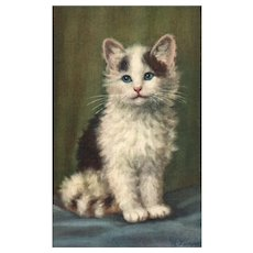 Artist Signed A Lampe featuring blue eyed cutie pie kitten cat vintage postcard