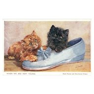 Artist Signed M Gear Black Persian and Short haired Kittens in a shoe