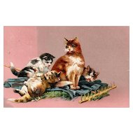 1909 PFB Series 8672 Momma cat and her kittens playing vintage postcard