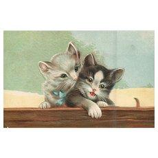 ABS #249 The Kitten whisperer Pair of Kittens cats Embossed vintage postcard