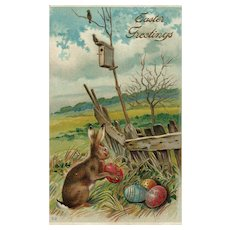 Easter Bunny Rabbit making delivery rounds Birds perched near a bird house Postcard