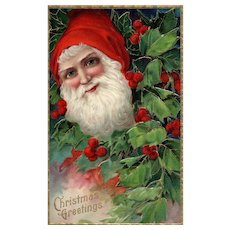 Blue eyed Red cap Santa Claus in Holly bush Vintage Christmas Postcard Series 1480