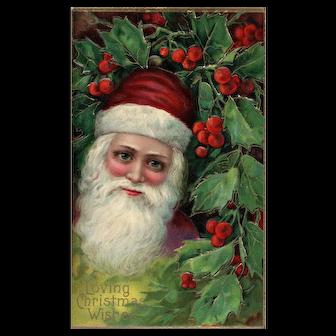Blue eyed Burgundy red cap Santa Claus in Holly bush Vintage Christmas Postcard Series 1480