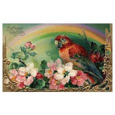 Gorgeous Birthday Greeting Parrot Series 1700 b Flowers Glossy