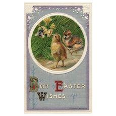 1910 John WInsch Easter Chicks Bee on Daffodil vintage Postcard