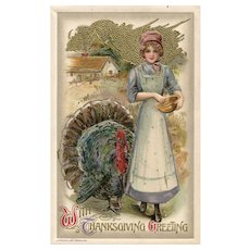 John Winsch Samuel Schmucker 1910 Gold Metallic Sky Turkey Being Fed Thanksgiving Postcard