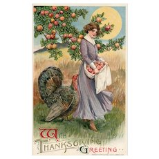 John Winsch Samuel Schmucker Woman Harvesting Apples In Apron Turkey Sun Thanksgiving Greetings Postcard