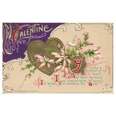 Gorgeous 1911 John Winsch Vintage Valentine postcard with hearts and flowers Football Enthusiast A