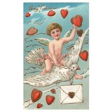 Cupid flying large white dove delivering hearts vintage postcard