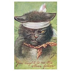 Artist Signed Black Cat With Yellow Eyes Confident After Cat Fight Postcard
