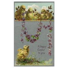 A Happy Easter Raphael Tuck Chicks on a ledge Violet vine vintage Postcard Series 701