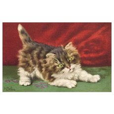D Merlin Artist Signed Vintage cat postcard Red backdrop